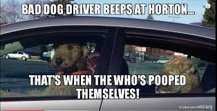 Dog Driving Meme - bad dog driver beeps at horton that s when the who s pooped
