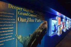 exhibits mystic aquarium