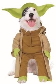 costumes for dogs costumes for dogs buycostumes