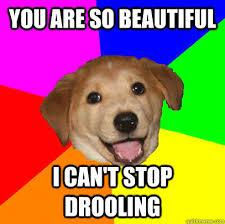 Drooling Meme - you are so beautiful i can t stop drooling advice dog quickmeme