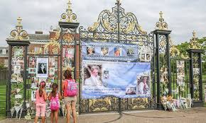 where is kensington palace tributes grow at kensington palace in celebration of princess