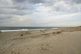 Sand Beach by Sand Fence Wikipedia