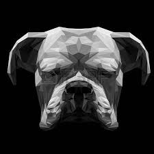 boxer dog white 2 342 boxer dog stock vector illustration and royalty free boxer