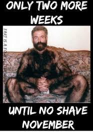 No Shave November Meme - only two more weeks until no shave november ar ms he sb ok om ne nv