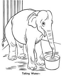 indian elephant baby mother super coloring free printables
