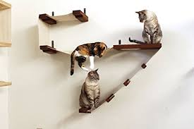 Wall Shelves For Cats Cool Cat Tree Plans Cat Shelves