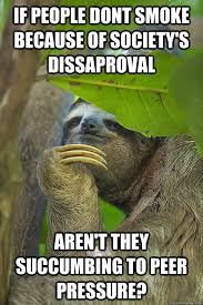 Sloth Jokes Meme - if a leaf fell on the forest floor and no one was around to eat it