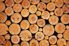 wood products eos european organisation of the sawmill industry press