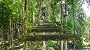 Botanical Gardens Highland Park Bali Botanical Garden In Bedugul Highland Bali Hello Travel