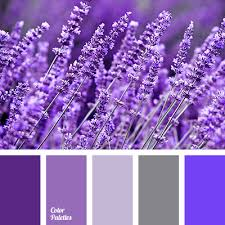 Purple Color Shades Blue Color Palettes Color Matching Dark Violet Grey Blue