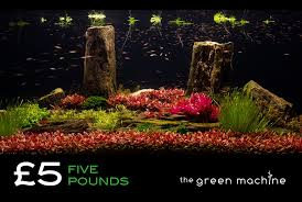 Aquascape Store 5 Gift Voucher Redeemable At The Green Machine