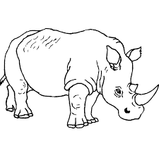 free animal coloring pages rhino animal coloring pages of