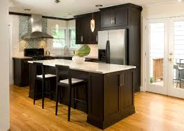 small kitchen with dark cabinets and mini pendant lamps above
