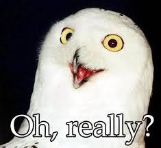 O Really Meme - fresh o rly meme i m really introduce yourself victory hockey league o rly meme jpg