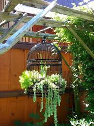 20 best decoration ideas with birdcage planters in 2017