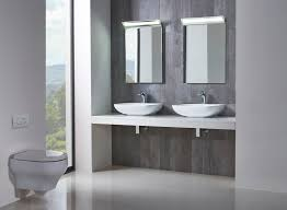 Basement Bathroom Ejector Pump Saniflo Bathroom Designs Best Bathroom Decoration