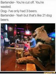 Wasted Meme - bartender you re cut off you re wasted dog i ve only had 3 beers
