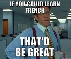 Meme Definition French - how can we sometimes understand a language but not speak it very