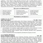 It Manager Resume Template It Manager Resume Template Director Of It Resume Example Templates