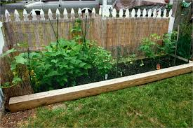 Small Vegetable Garden Ideas Pictures How To Start A Small Vegetable Garden For Beginners Amazing Best