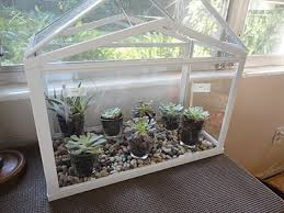 greenhouse ikea unusual kitchen garden pinterest mini