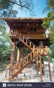 summer beach tree house on tropical koh rong island cambodia