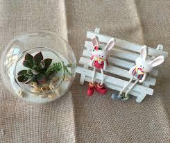 2pcs set round succulent terrarium kit with air plant moss indoor