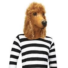 halloween dog toys amazon com standard poodle dog halloween costume face mask off