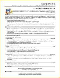 sharepoint resume web developer resume sle haadyaooverbayresort simple