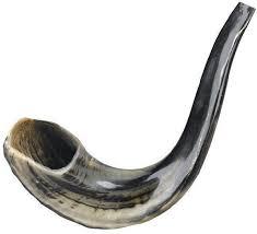 plastic shofar shofar store ahuva