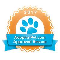 american eskimo dog rescue colorado eskie rescuers united