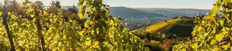 Bad Bergzabern Plz Ferienwohnungen U0026 Ferienhäuser In Südliche Weinstraße Mieten