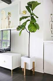 plante pour cuisine lovely support de plantes d interieur 14 lettre d233corative