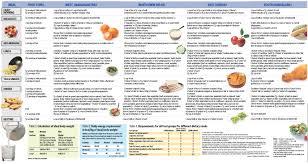 resumes cv diet chart