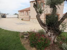chambre d hote banyuls chambre d hôtes le jardin de l olivier chambre d hôtes banyuls dels