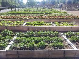 Urban Garden Denver - groundwork u0027s urban farms groundwork denver