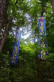 tree sit ramps
