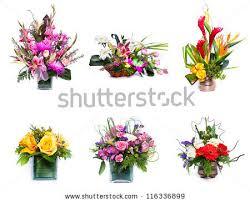 flower arrangement flower arrangement stock images royalty free images vectors