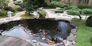 japanese garden pond designs trends and ideas 2018 2019 home