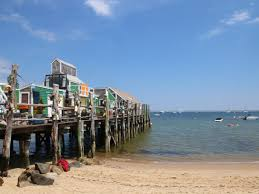 5 day marthas vineyard plymouth cape cod boston tour from new york