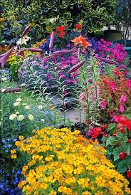 768 best delights in the garden images on pinterest flowers