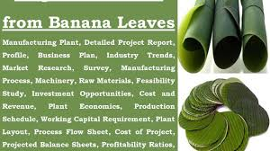 leaf shaped writing paper disposable plates from banana leaves youtube disposable plates from banana leaves