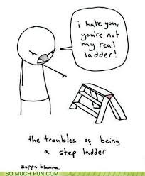 Ladder Meme - puns step ladder funny puns pun pictures cheezburger