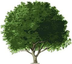 free animated trees tree clipart flowers