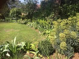 sarah abbott gardens kings avenue penn hill true plant lovers