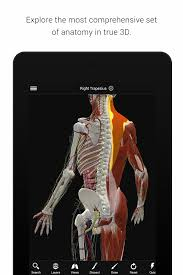 Interactive 3d Anatomy Biodigital Human 3d Anatomy Android Apps On Google Play