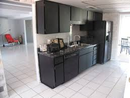 Black Kitchen Cabinets Images 141 Best Kitchens With Black Appliances Images On Pinterest