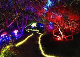 botanical gardens fort bragg ca festival of lights mendocino coast botanical gardens becomes winter wonderland