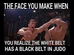Martial Arts Memes - 213 best martial funny images on pinterest ha ha martial arts
