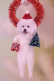 bichon frise virginia 155 best bichon frise images on pinterest animals dog care and
